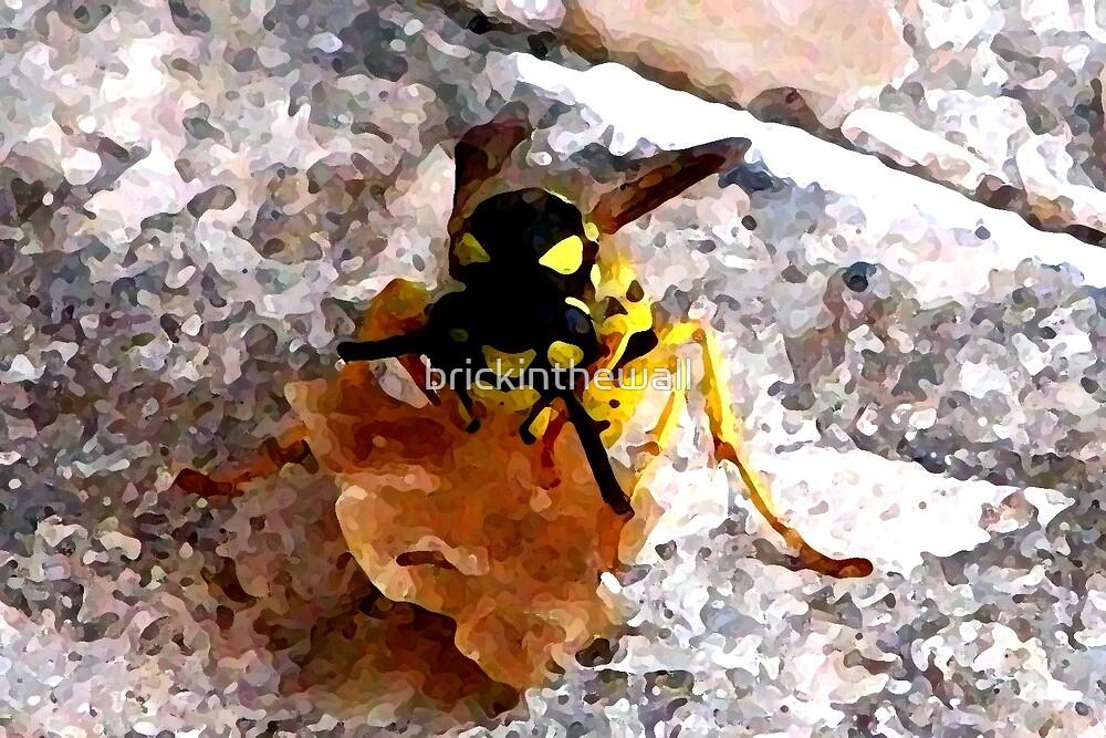 Wasp at work by brickinthewall