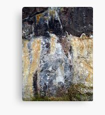 Image of a Wolf Canvas Print