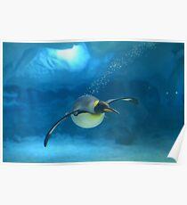 Penguin Blues Poster