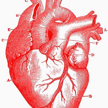 Oversized Anatomical Heart T-Shirt by mashedelephants