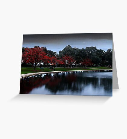Erythrina Trees By The Lake  Greeting Card
