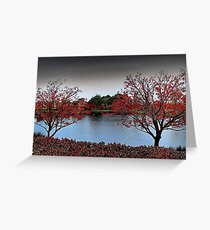 Erythrina Trees  Greeting Card
