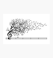The Sound of Nature Photographic Print