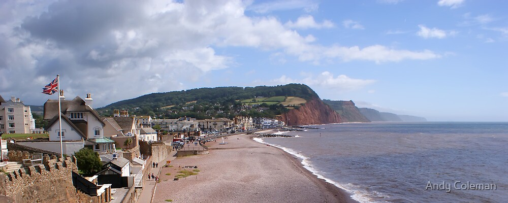 Sidmouth Coastline by Andy Coleman