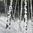 Birch tree art print by derekmccrea