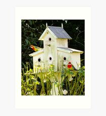 Looking for that Perfect Love Nest Art Print