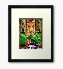 Doors & more... Framed Print