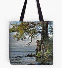 Storm break Tote Bag