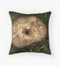 Study in Browns Throw Pillow