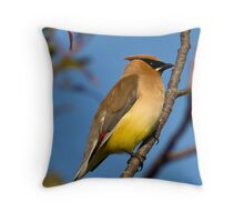 Beauty on a branch Throw Pillow