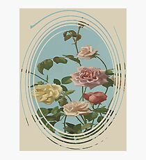 Vintage Tea Rose and Blush Roses Photographic Print