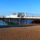 Palace Pier Brighton by mikebov
