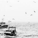 Retour de pêche by Jean-Luc Rollier