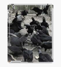 Vultures iPad Case/Skin