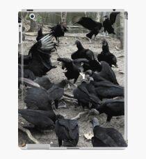 Vultures iPad-Hülle & Klebefolie