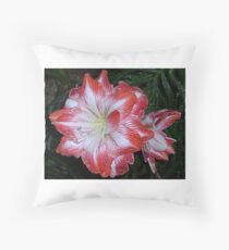 Amaryllis Thrillus Throw Pillow