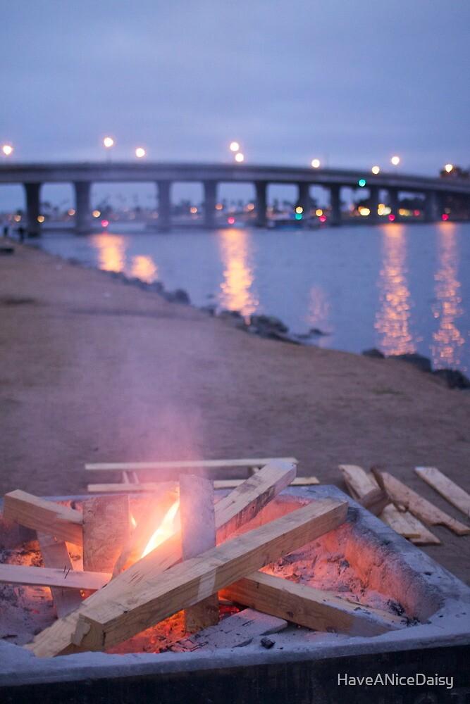 Sunset bonfire by HaveANiceDaisy