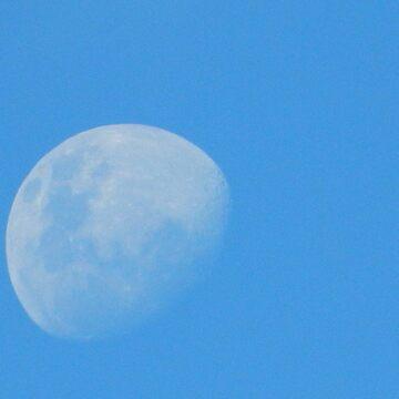 Moon View. Black Point. Yorke Peninsula. South Australia. by petey59