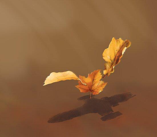 Blätter im Wind von Glenn Martin