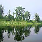 Summer at the lake by Tori Snow