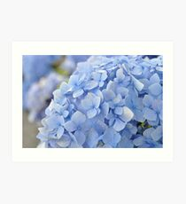 Beautiful Blue Art Print