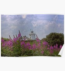 Purple flowers with Cromer lighthouse Poster