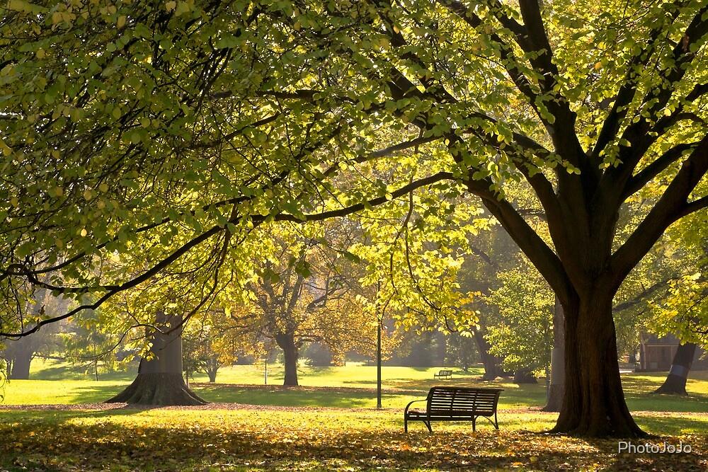 A quiet place: Autumn at Fitzroy Gardens Vic Australia by PhotoJoJo