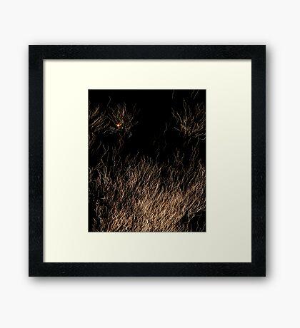 Spaghetti? Framed Print