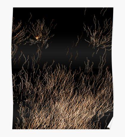 Spaghetti? Poster