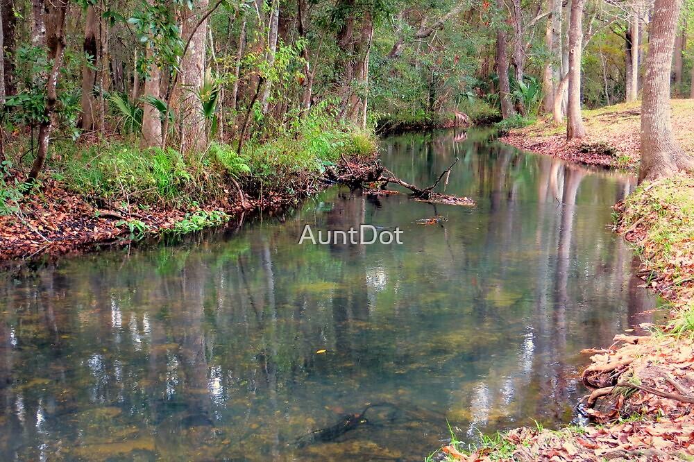 Up a Creek by AuntDot