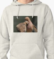 Lovey Doves Pullover Hoodie