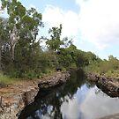 Townsville - Australia - Queensland by Karen Stackpole