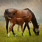Mom and Baby by Deborah  Benoit