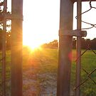 Chain Link Sunset by Stefanohbody