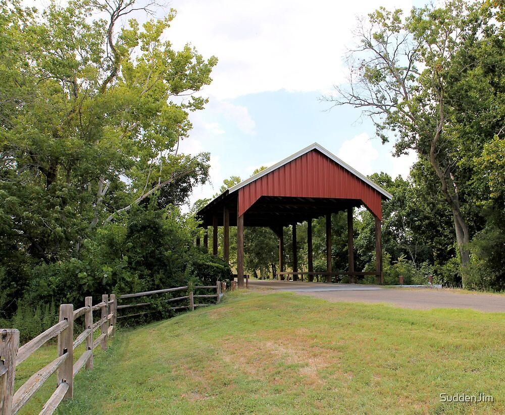 Covered Bridge, Chappell, Texas by SuddenJim