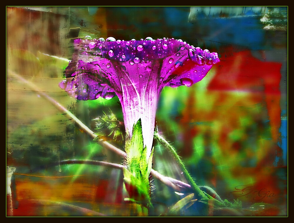 """Funky Morning"" by Gail Jones"
