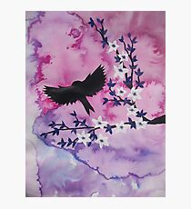 Watercolour acrylic pink birds with tree branches Photographic Print