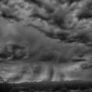 Roiling Sky by Judi FitzPatrick