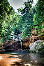 Forest Pool -- Hocking Hills by Bill Wetmore