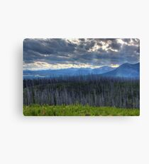Ghostly Landscape Canvas Print
