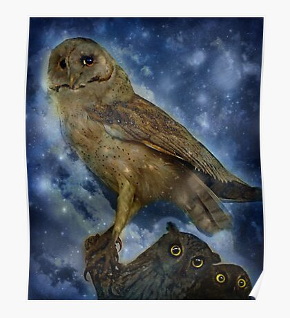 The Wisdom, Second Sight and Sensitivity of the Owl Poster