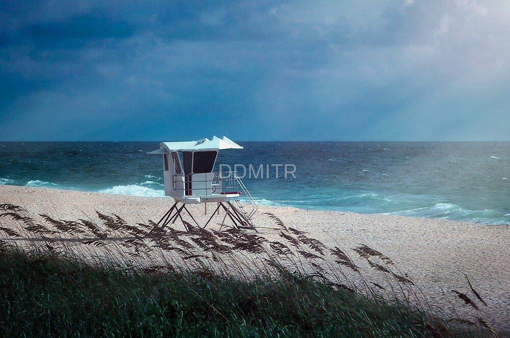 Morning on the Beach by DDMITR