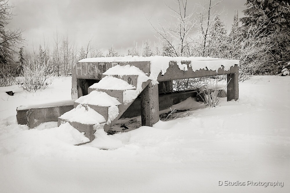 Stairs to Snow by milod21