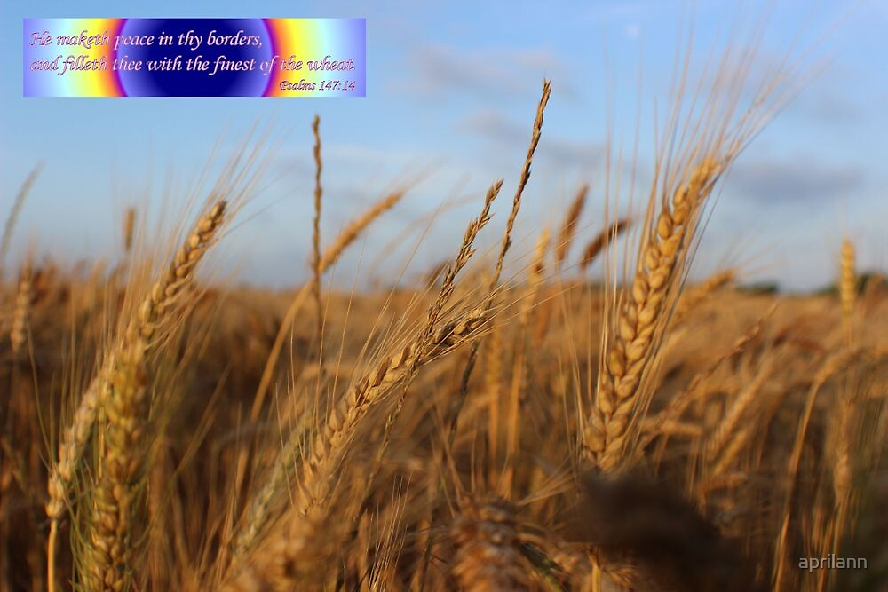 The Finest of the Wheat by aprilann
