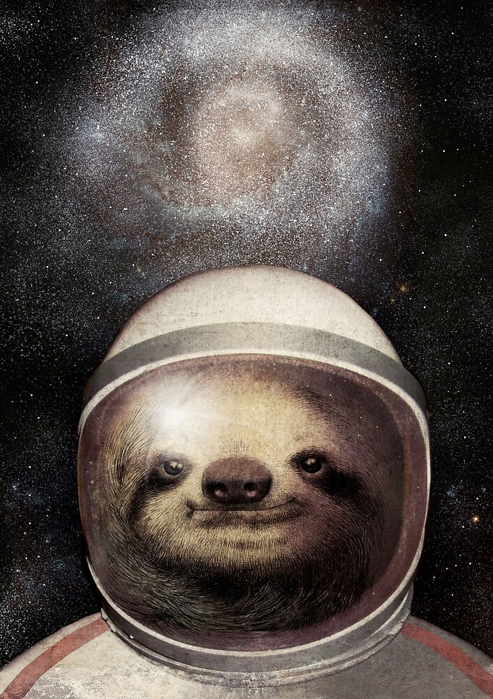 """Space Sloth"" by Eric Fan 