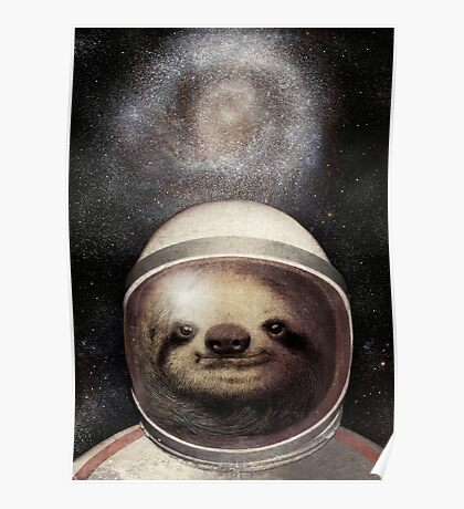 Space Sloth Poster
