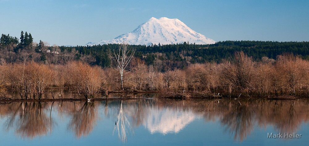Nisqually Delta in Winter - Washington State by Mark Heller