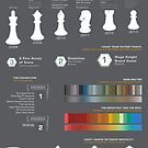 Deck Building Game Infographic by wynnter