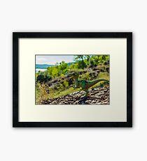 Cretaceous world Framed Print