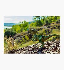 Cretaceous world Photographic Print